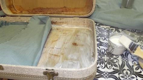 Suitcase interior 002