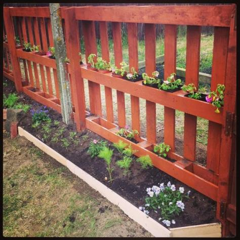Garden Pallet Fence
